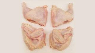 ayam karkas potong 4