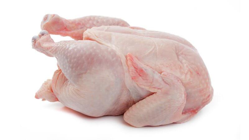 supplier daging ayam